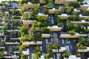skyscraper vertical forest in Milan