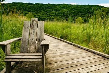 Appalachian Trail Boardwalk