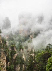 Yuanjiajie Scenic Area with clouds and mist, Wulingyuan, Zhangjiajie National Forest Park, Hunan Province, China, Asia