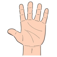 vector of cartoon hand