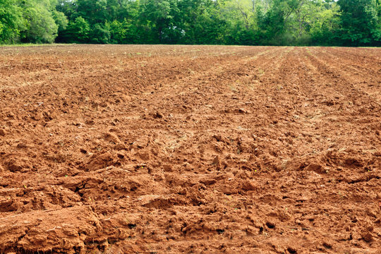 Red colored soil in Alabama