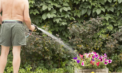 Man watering garden with hose, close-up