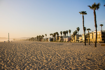 Golden Hour on Venice Beach