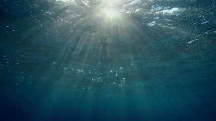 Fototapete - Underwater background with transition between water surface and air