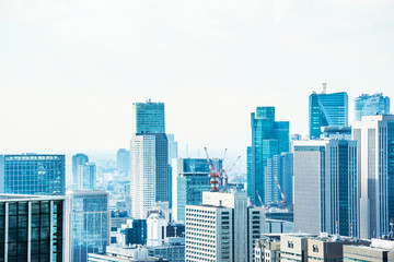 Asia Business concept for real estate and corporate construction - panoramic modern city skyline bird eye aerial view under blue sky in Tokyo, Japan