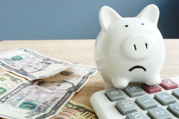 Money worries concept. Unhappy piggy and few banknotes with calculator. Problems with money.