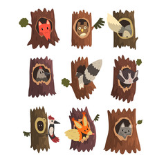 Cute animals and birds sitting in hollow of tree set, hollowed out old tree and fox, owl, wolf, raccoon, woodpecker and squirrel inside cartoon vector Illustrations on a white background