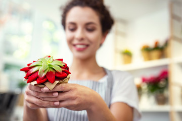 Flower shop. Selective focus of a houseplant being in hands of a positive nice shop assistant