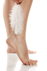 well-nourished woman leg and a white feather on a white background