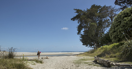 Going to the beach. New Zealand