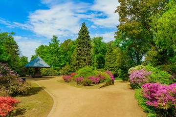 Beautiful  garden.  city park