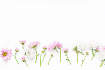 Flatlay with flowers and blossoms arranged on white background. Top view, copy space, botanical concept..