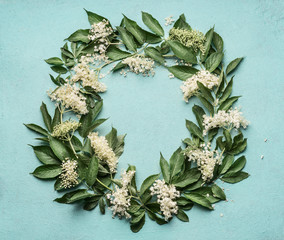 Wall Mural - Round frame or wreath of Elderflowers  on blue background, top view