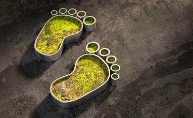 3D-Illustration Fußabdruick Ökologie Erde
