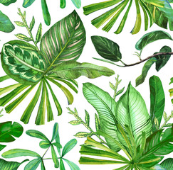 Seamless pattern with banana leaves. Tropical background with vintage tropical leaves