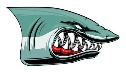 Angry shark head colored