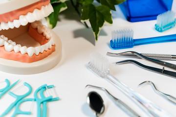 歯周病ケア