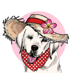 Vector portrait of Labrador retriever dog wearing straw hat, flower and polka dot bandana. Summer fashion illustration. Hand drawn pet portait. Poster, t-shirt print, holiday, postcard, summertime.