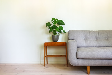 Modern retro interior. A gray couch and vintage table with a potted plant, fruit salad tree (Monstera deliciosa). Empty white wall in background. Copy space for text.