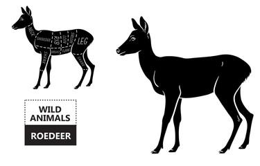 Cut of roedeer set. Poster Butcher diagram - roe. Vintage typographic hand-drawn. Vector illustration
