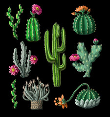 Cacti with flowers isolated on a black background. Vector illustration.