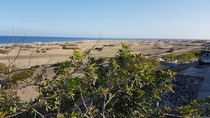 Sand dunes of Maspalomas, Gran Canaria