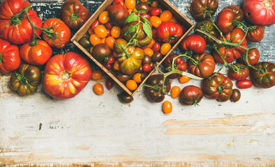 Flat-lay of fresh colorful ripe Fall or Summer heirloom, bunch and cherry tomatoes veriety over rustic painted background, top view, copy space. Local market seasonal produce