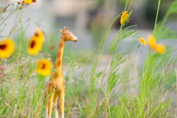 Miniature giraffe figurine in grass and yellow flowers like a mini safari.