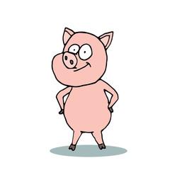 Caricature pig. Cartoon pig
