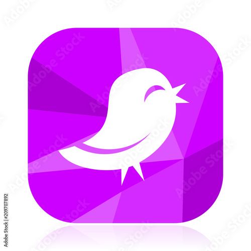 twitter violet square vector web icon internet design and webdesign