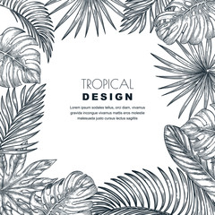 Tropical palm leaves vector square frame. Sketch hand drawn illustration of jungle exotic plants