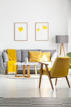 Posters with yellow flowers hanging above a gray couch in bright living room interior with retro armchair and wooden coffee table. Real photo