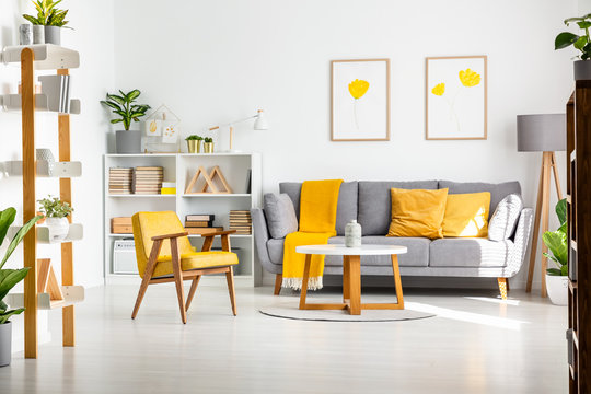 Real photo of a scandi living room interior with gray and yellow furniture, white walls, flower posters and plants