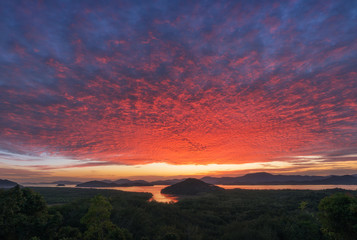 Vivid twilight Sunset or Sunrise over the sea and Tropical forest, mangrove forest  . Bright Dramatic Sky. Beautiful sky and Cloud Over Skyline, Cloud Type ,Cirrocumulus, Altocumulus, stratocumulus,At