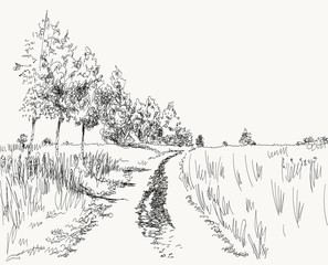 vector illustration summer landscape with country road