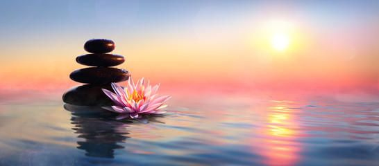Photo sur Aluminium Fleur de lotus Zen Concept - Spa Stones And Waterlily In Lake At Sunset