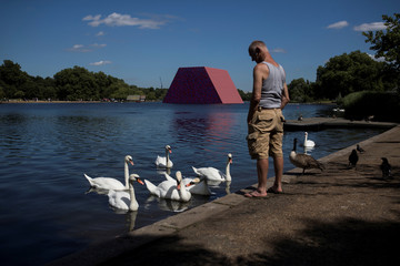 A man looks at swans as the 'The London Mastaba' by artist Christo stands beyond in the Serpentine in Hyde Park, London