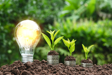 Light bulb with coins beside and young plant on top for saving money,financial,business or energy...
