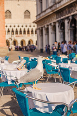 A large white seagull is standing on a table in the Piazza San Marco in Venice in Italy