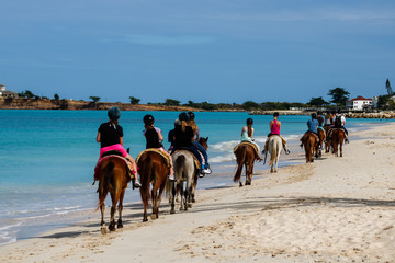 Group of tourists horseback riding on the beach in Antigua Island,  Day at the beach in St.John, Antigua & Barbuda Island, Caribbean.