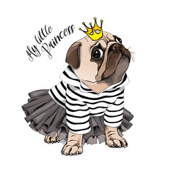 Pug Dog in a striped cardigan, in a black tutu skirt and with a gold princess crown. Vector illustration.