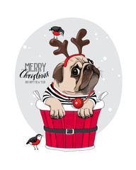 Christmas card. Pug Dog in a Santa's deer mask and with a funny red nose inside of a bucket. Vector illustration.