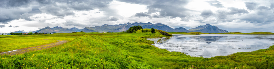 Printed roller blinds Eastern Europe Panoramic view of beautiful meadows field of grass and flowers near Hofn, Iceland
