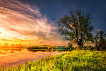 amazing landscape of summer nature on river shore at sunset with colorful cloudy sky. Perfect scene large tree on grassy bank of lake. Grass glowing on warm sunlight in the evening.