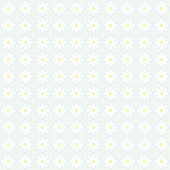 correct simple pattern of white cute daisies with a yellow center on a blue background floral vector seamless texture background