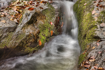Long exposure about a small spring with waterfall in autumn Esztergom, Hungary