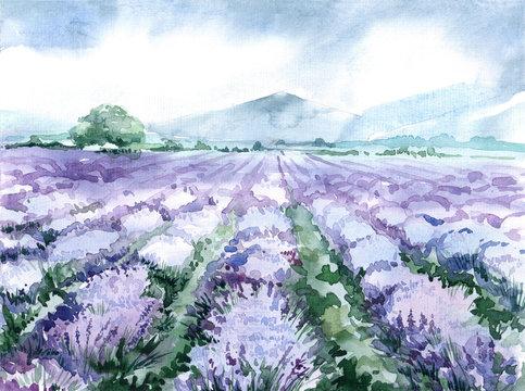 watercolor lavender field. scenic landscape of the Provence