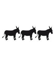 3 freunde crew party reihe esel pferd pony klein packesel lange ohren bauernhof reiten reiter silhouette schwarz umriss