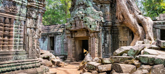 Tree roots over the beautiful Ta Prohm temple at Angkor, Siem Reap Province, Cambodia. It was founded by the Khmer King Jayavarman VII as a Mahayana Buddhist monastery and university. Fototapete