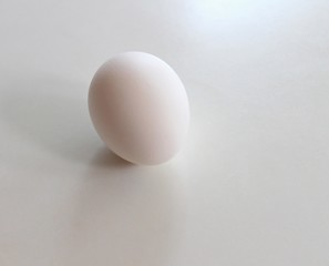 Single whole egg in the shell.